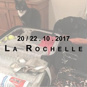 Miniature Rochelle