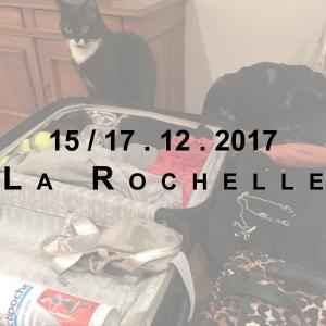 Miniature Rochelle Décembre